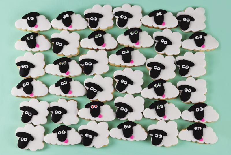 sean-sheep-cookies.jpg