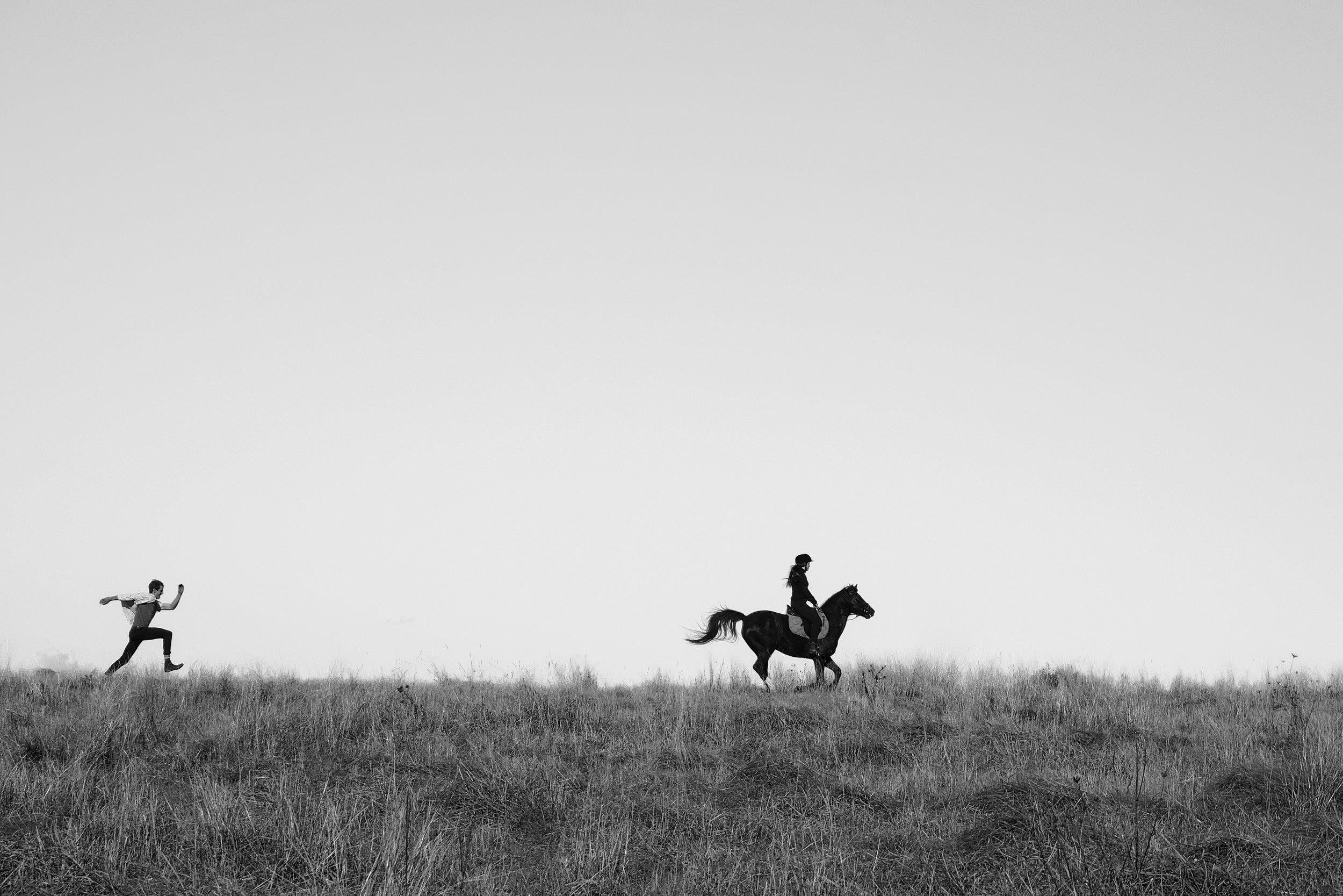 James Horse.jpg