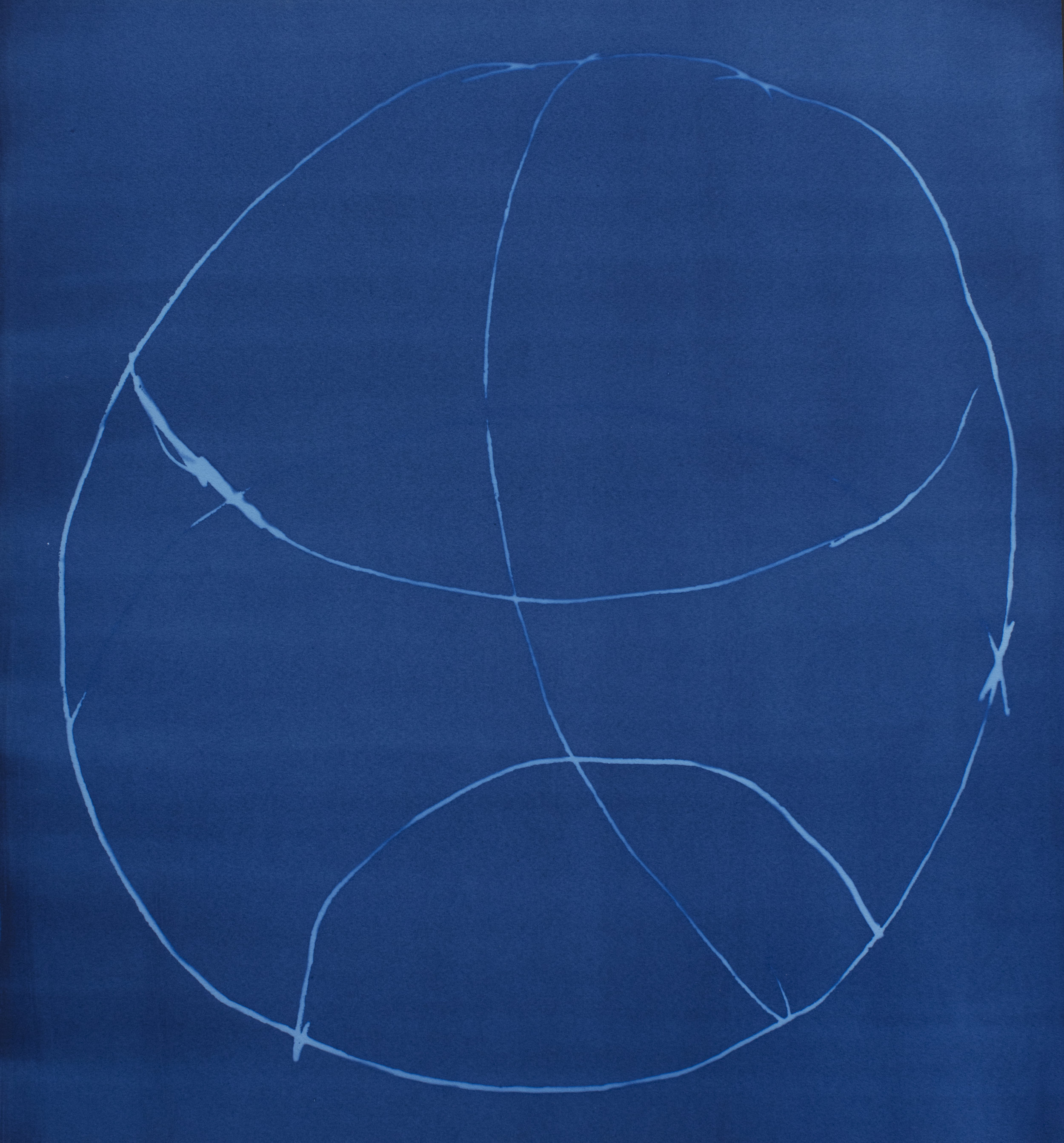 Cyanotype7 copy.jpg