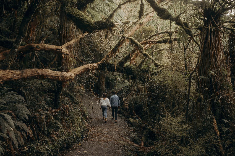 NZ waterfalls _ 04.jpg