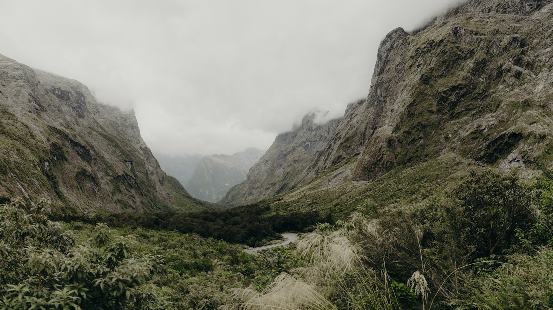 Fiordland Acorn Photography & Cinema_ 04.jpg