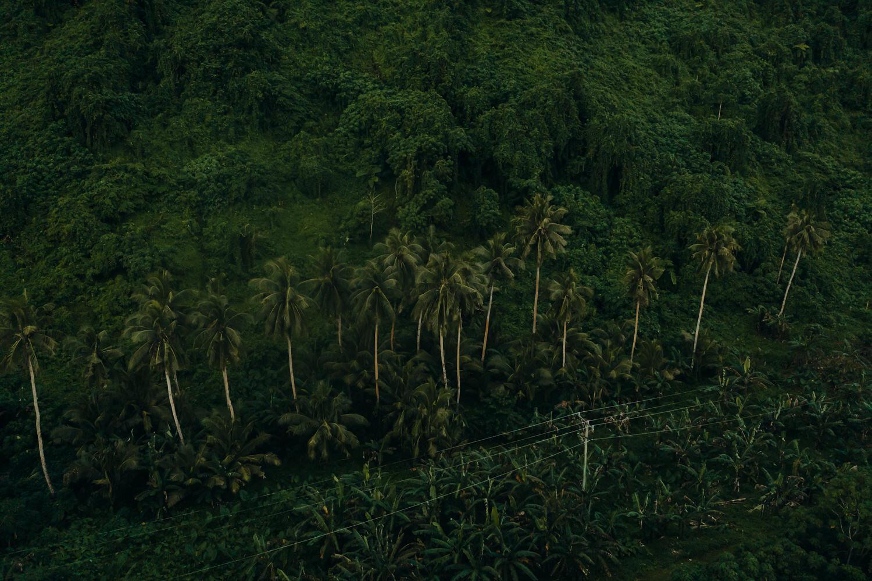 Samoa - Acorn Photography & Cinema_13.jpg