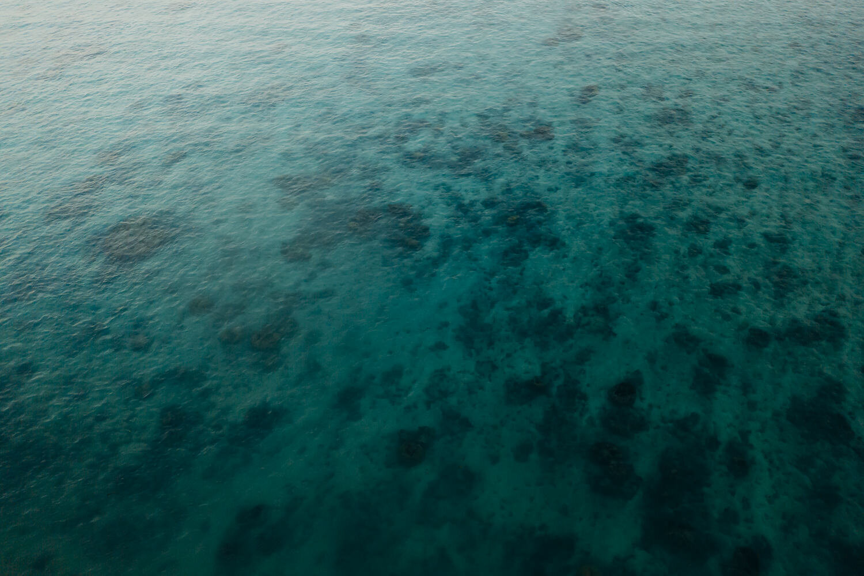 Samoa - Acorn Photography & Cinema_14.jpg