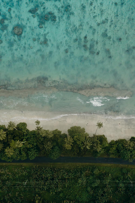 Samoa - Acorn Photography & Cinema_15.jpg
