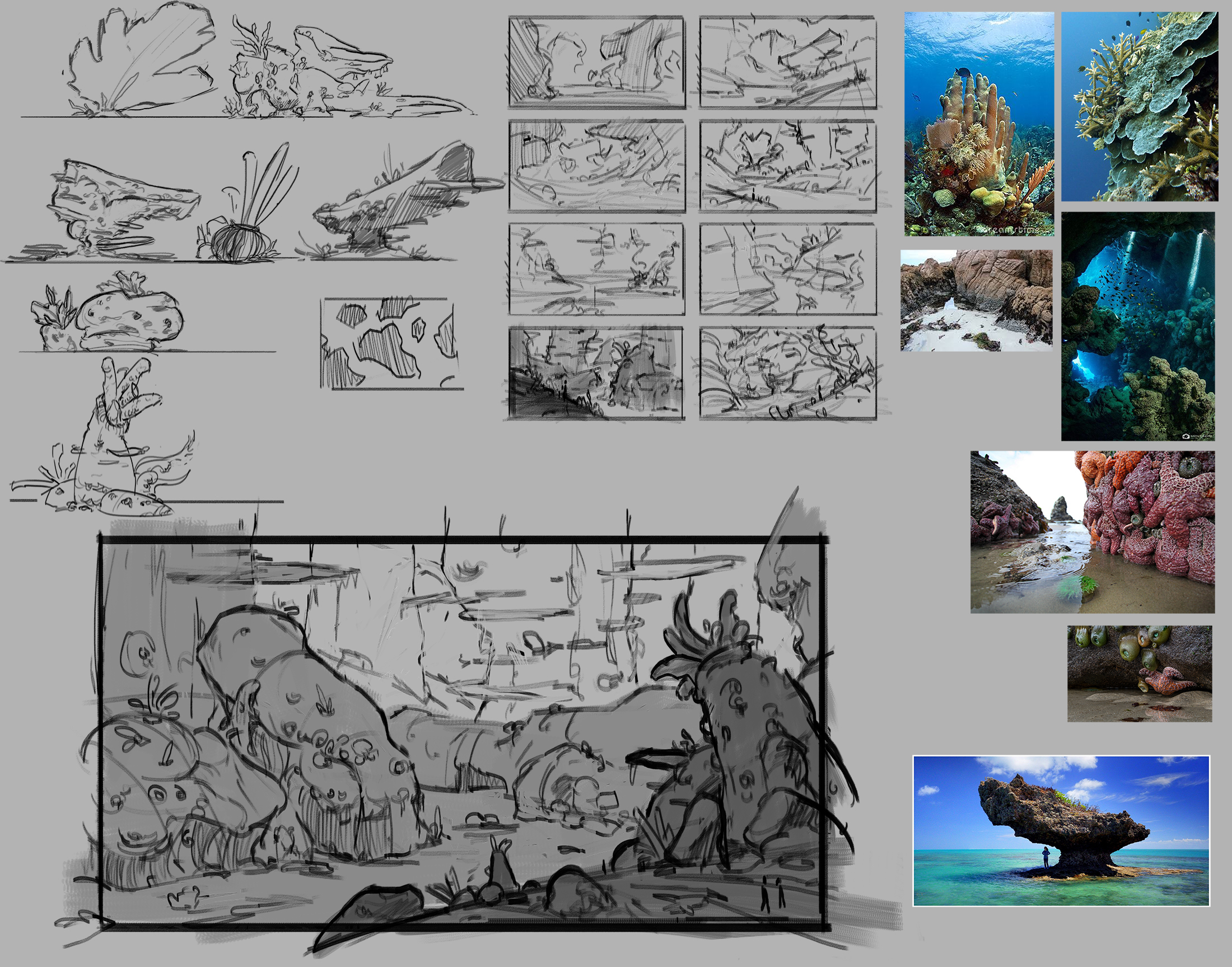Coral Forest Sketches.jpg