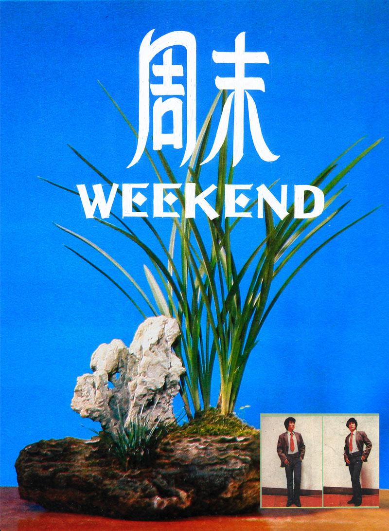 雷磊,《盆景艺术展览》,盆景艺术展览办公室,1979年。图片由艺术家提供。