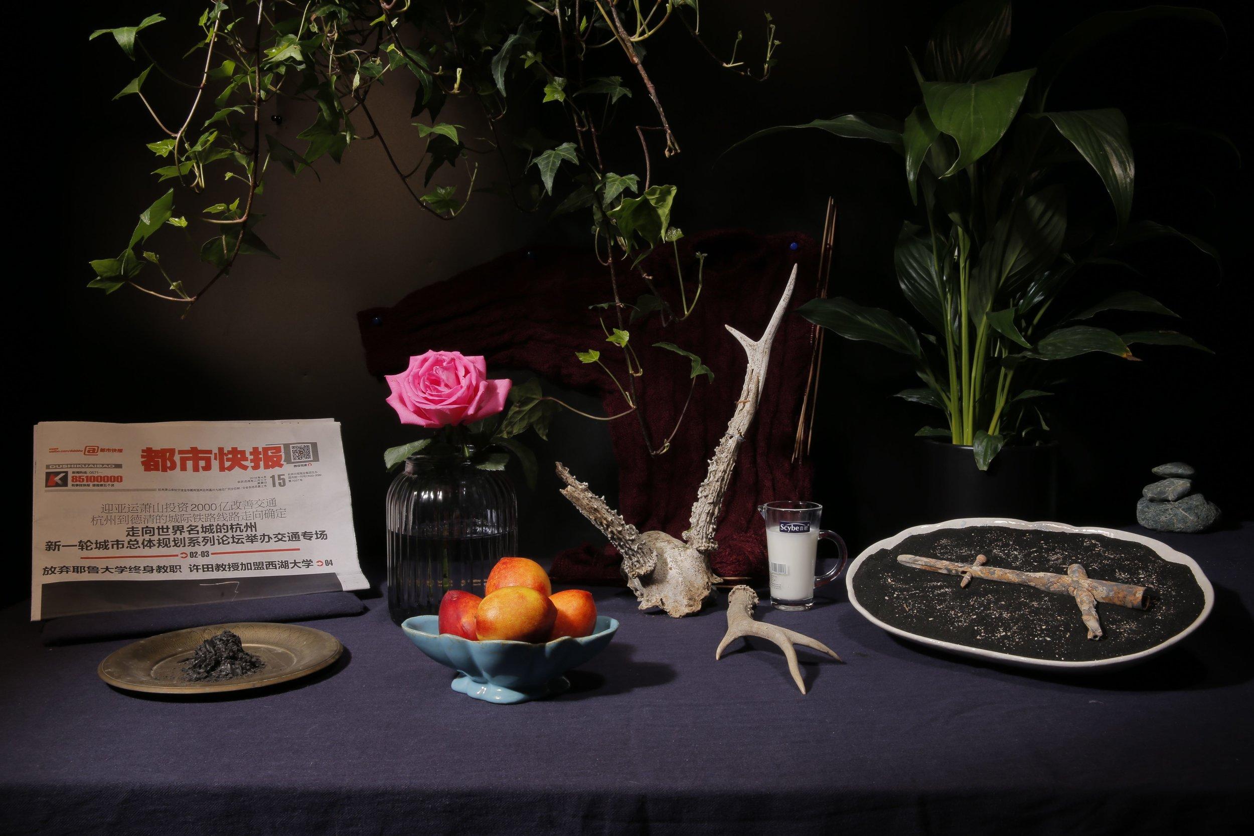 邵睿璐,《不要害怕生或死,你早已见过许多》,2018年。互动性延时静物摄影+静物陈列。图片由艺术家提供。