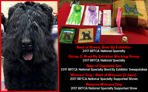 Charlie brings it home at BRTCA Nationals