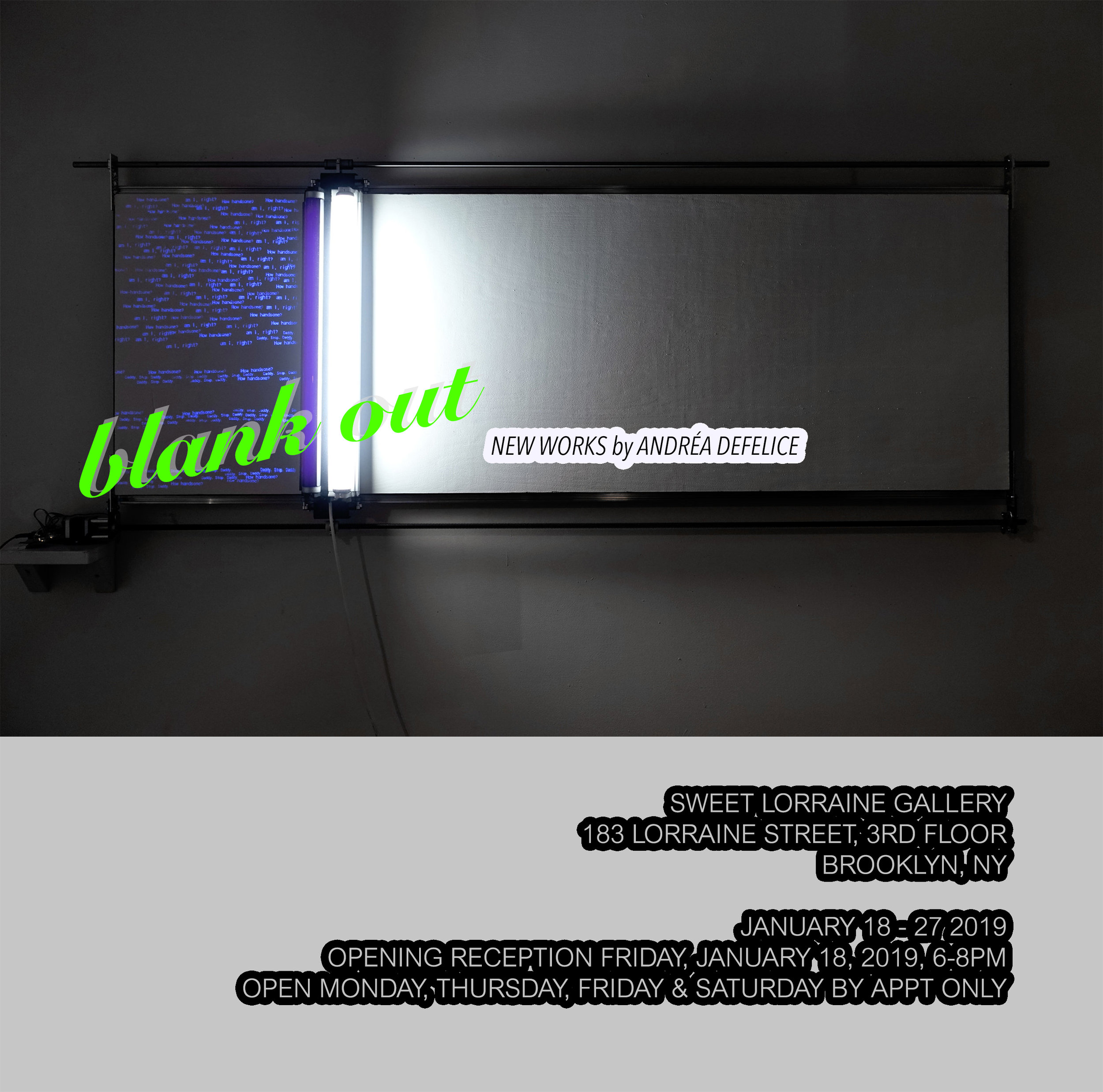 Blank Out :: Solo show    January 18 - 27 2019 Sweet Lorraine Gallery 183 Lorraine Street 3rd floor Brooklyn, NY 11231 Opening reception: Friday, January 18th 6pm - 8pm Gallery hours: Monday, Thursday, Friday & Saturday by appointment only