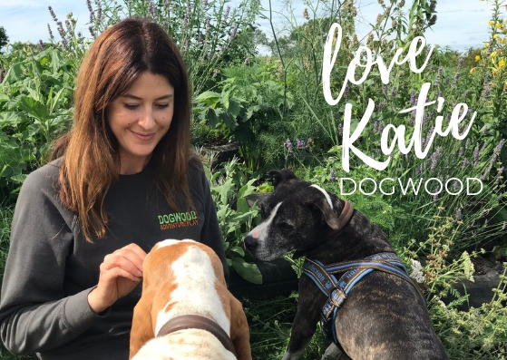 Katie at Dogwood