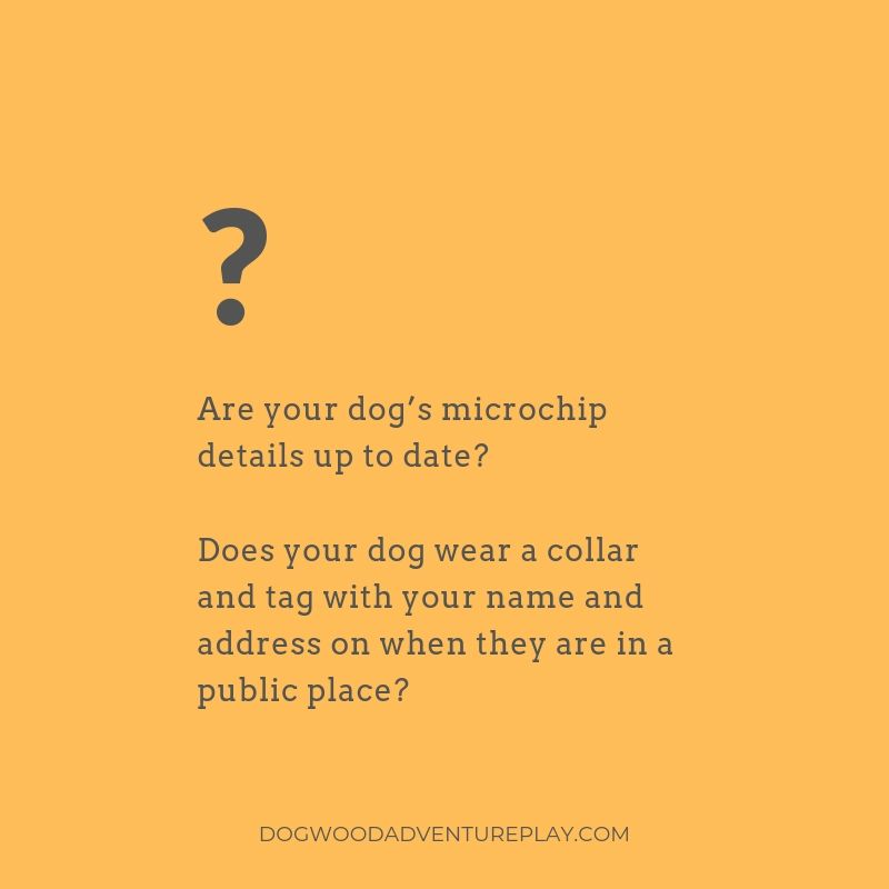 Dogwood responsible dog ownership