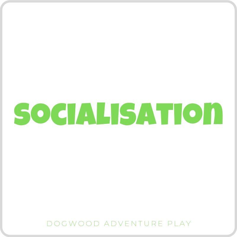 socialisation (1).jpg