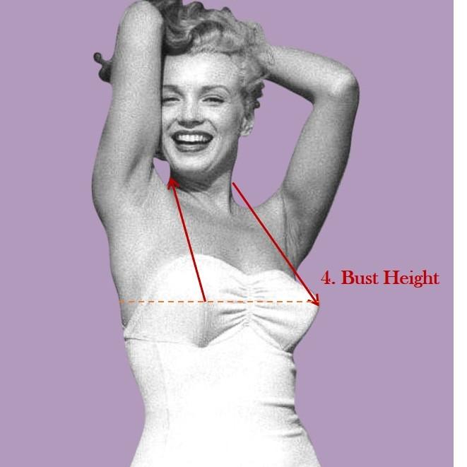 bust height.jpg