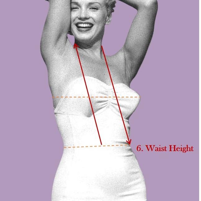 Waist Height.jpg