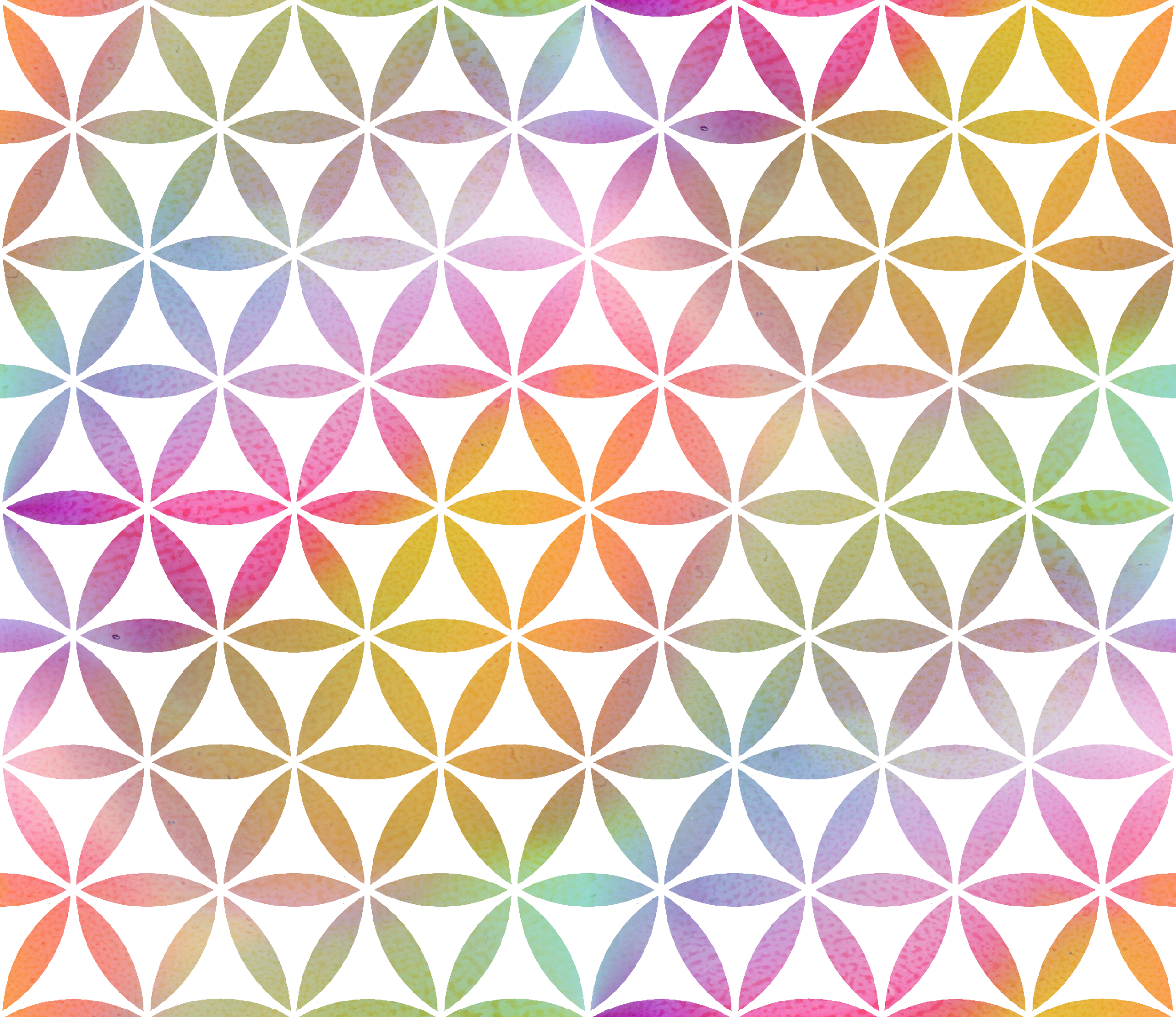 rainbow geo flowers white.png