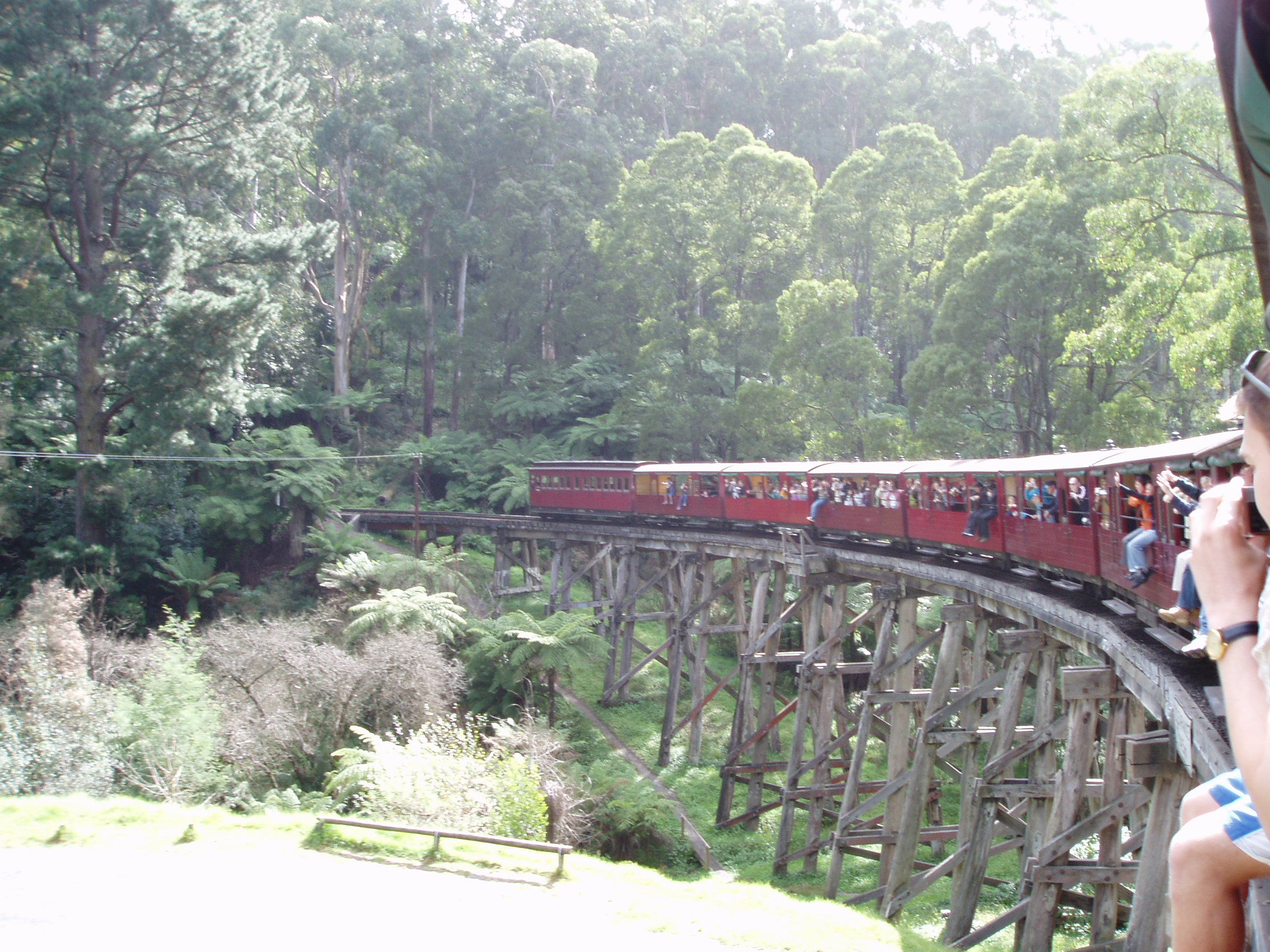 Crossing one of the old timber bridges on Puffing Billy.