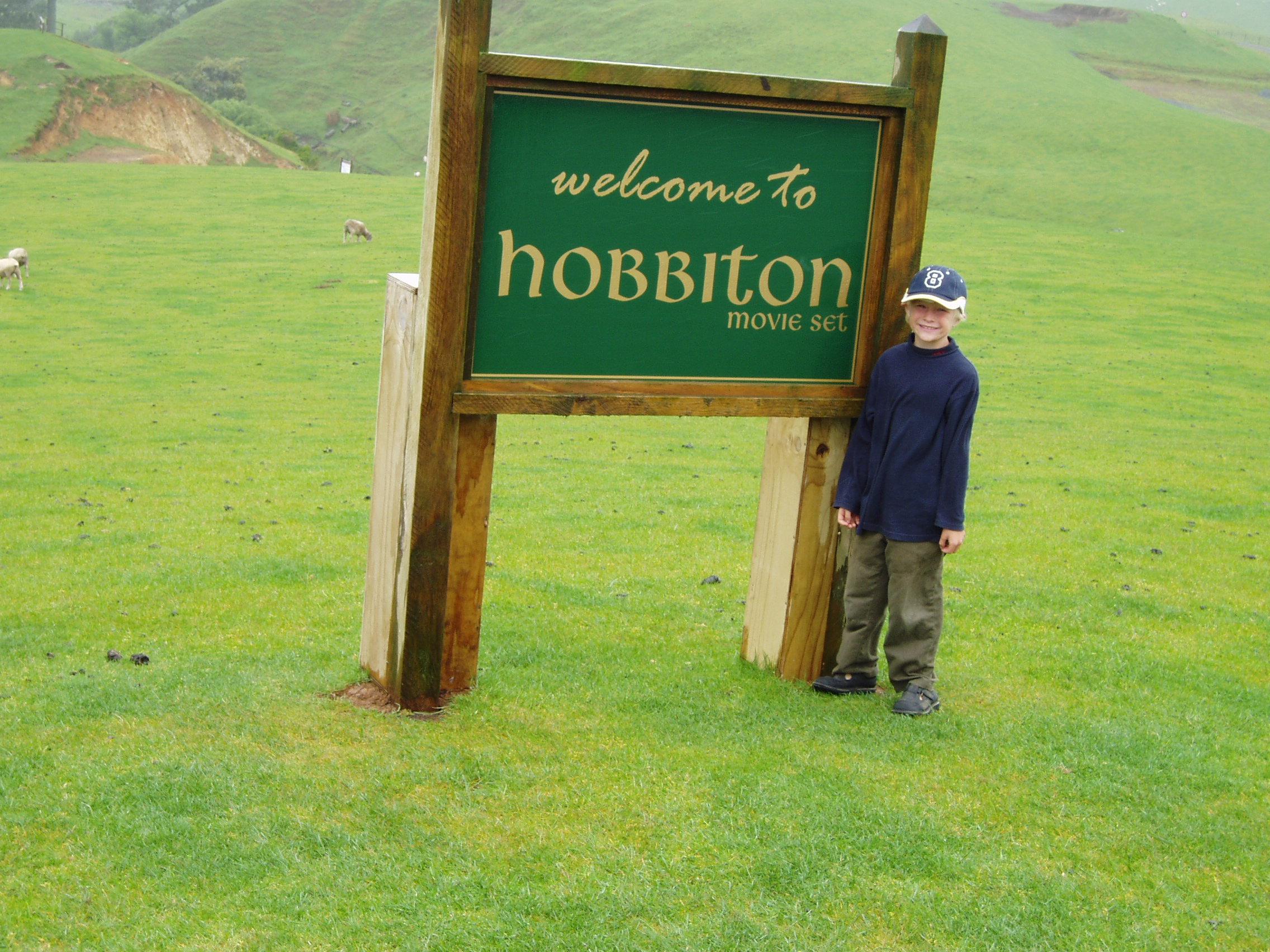 Hobbiton 2003 - a sheep field