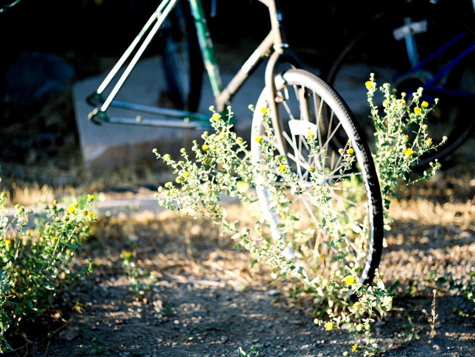 170812_LisaLPortraitsFilmFuji400H_MTalaveraPhoto Blog-12.jpg