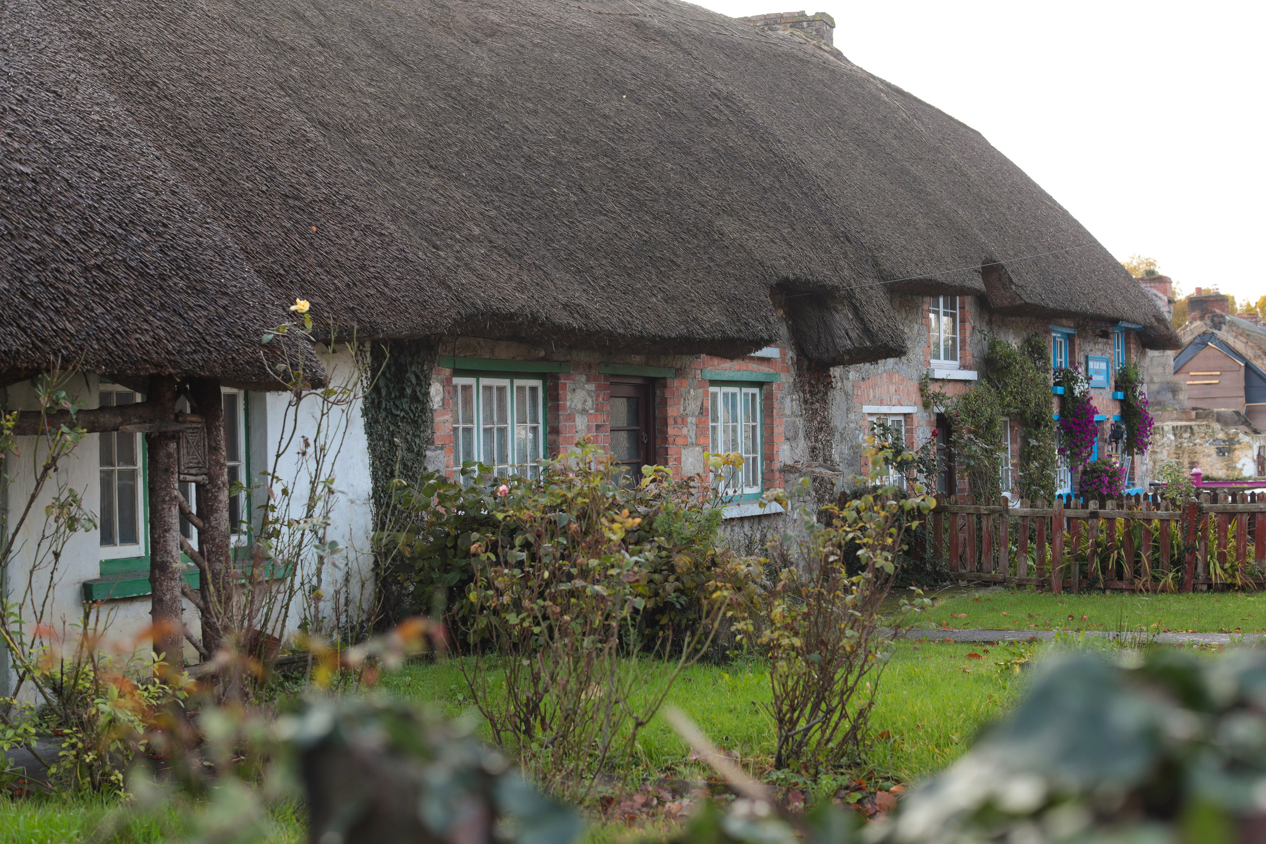 Thatched roofs in Adare