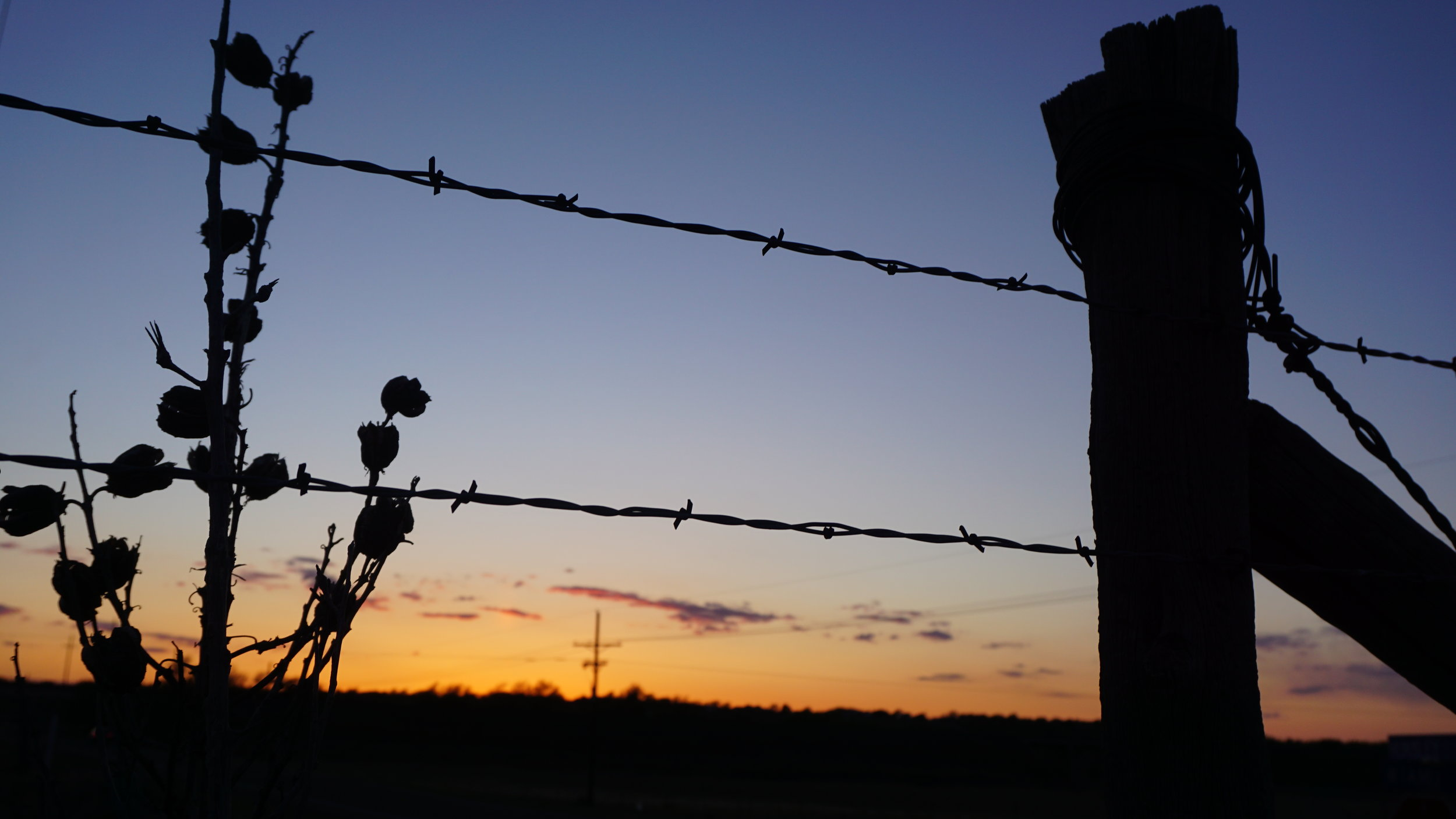 The Fence & Sunset At My Sister's Property In Canyon Texas