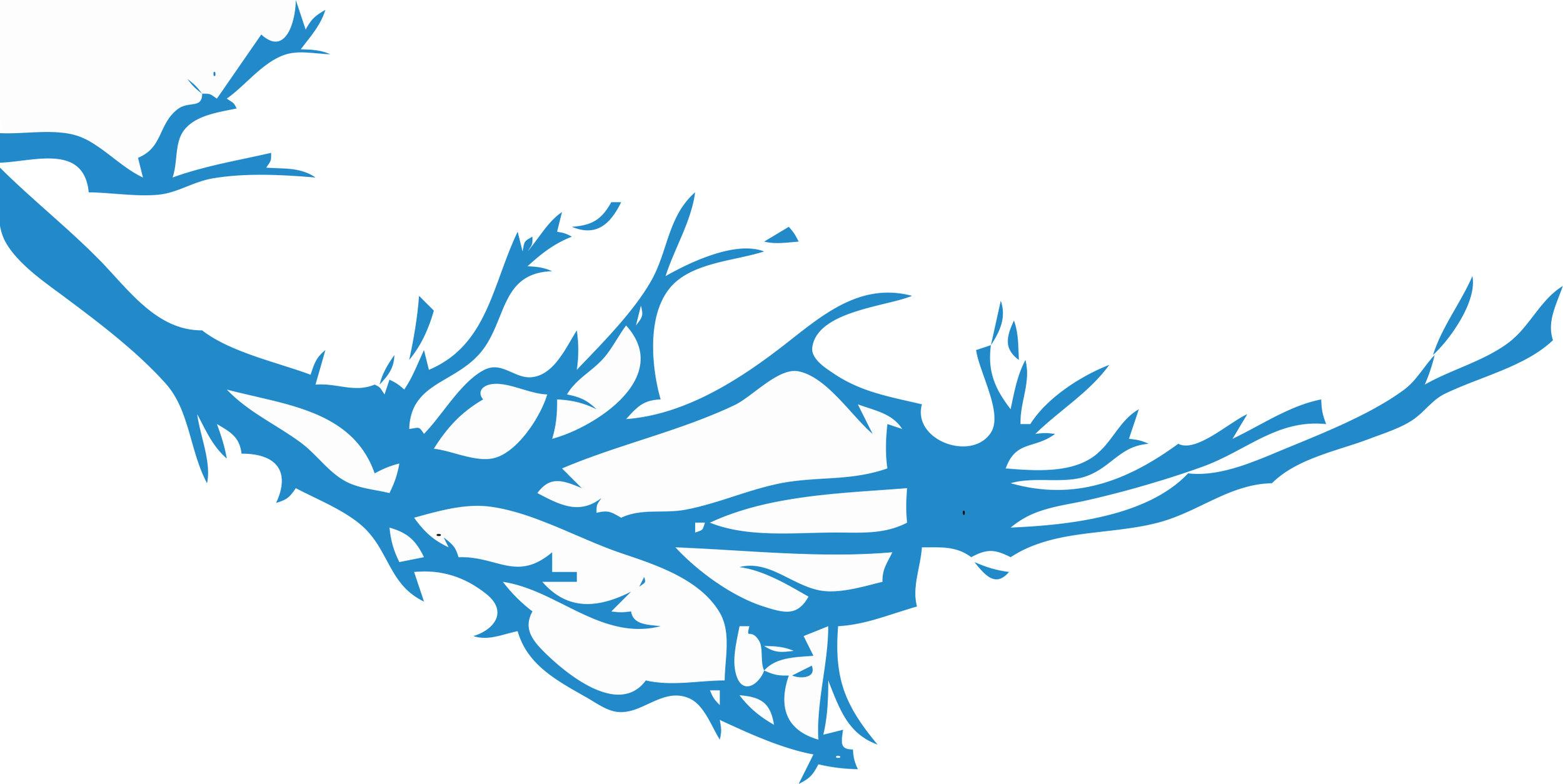 Live Oak Illustration 2.jpg