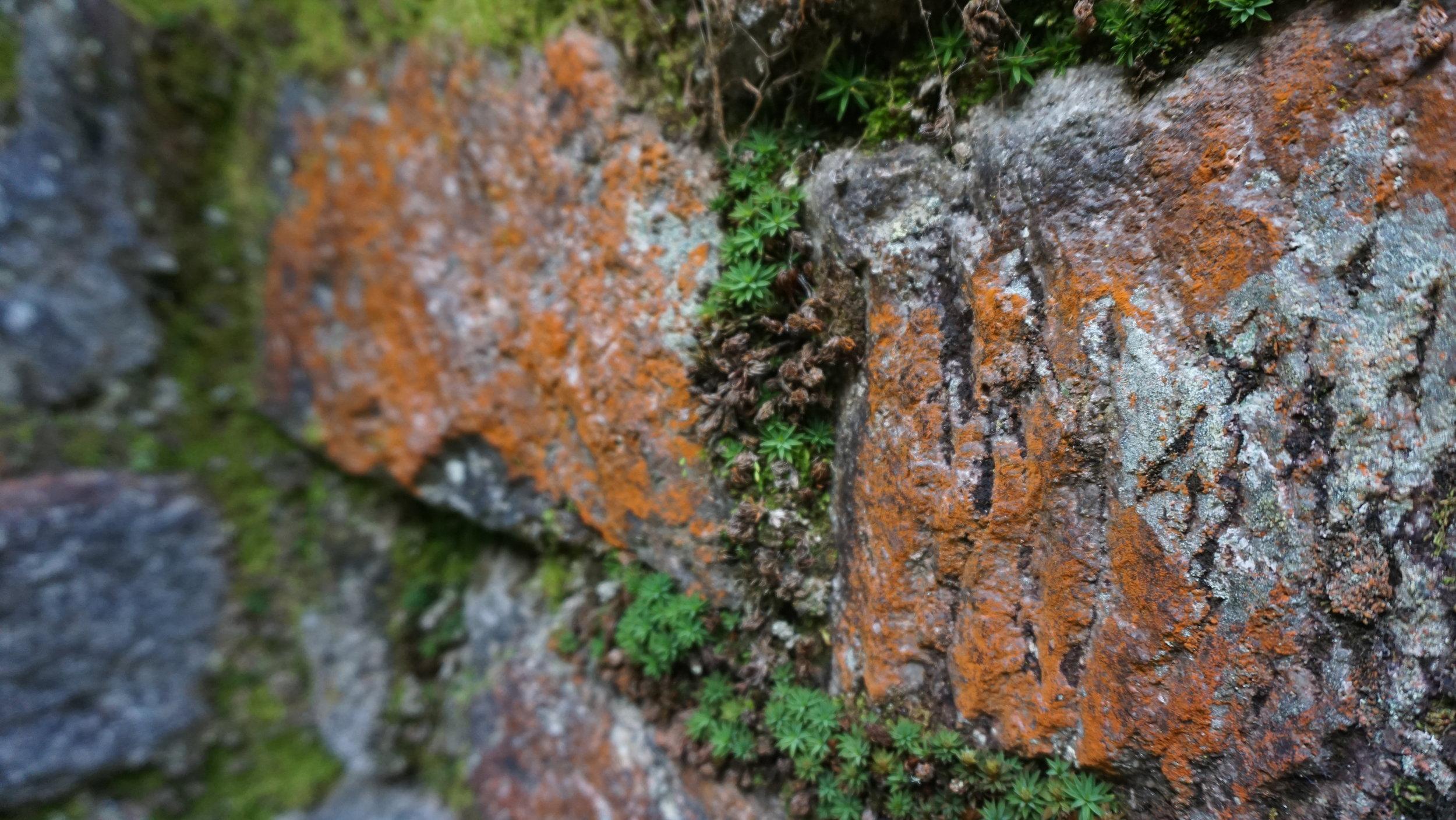 Slow erosion