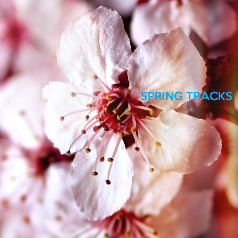 Spring Tracks 2018 album art.png