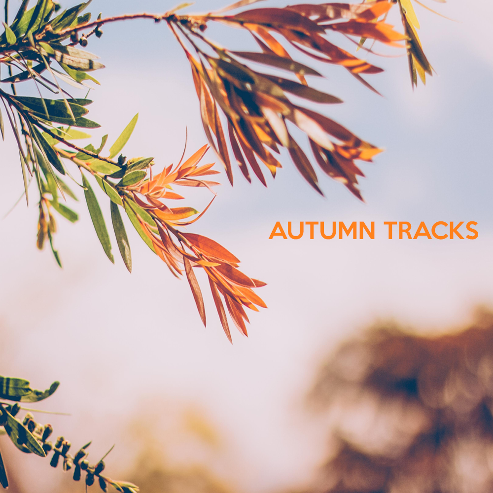 Autumn Tracks 2018.png