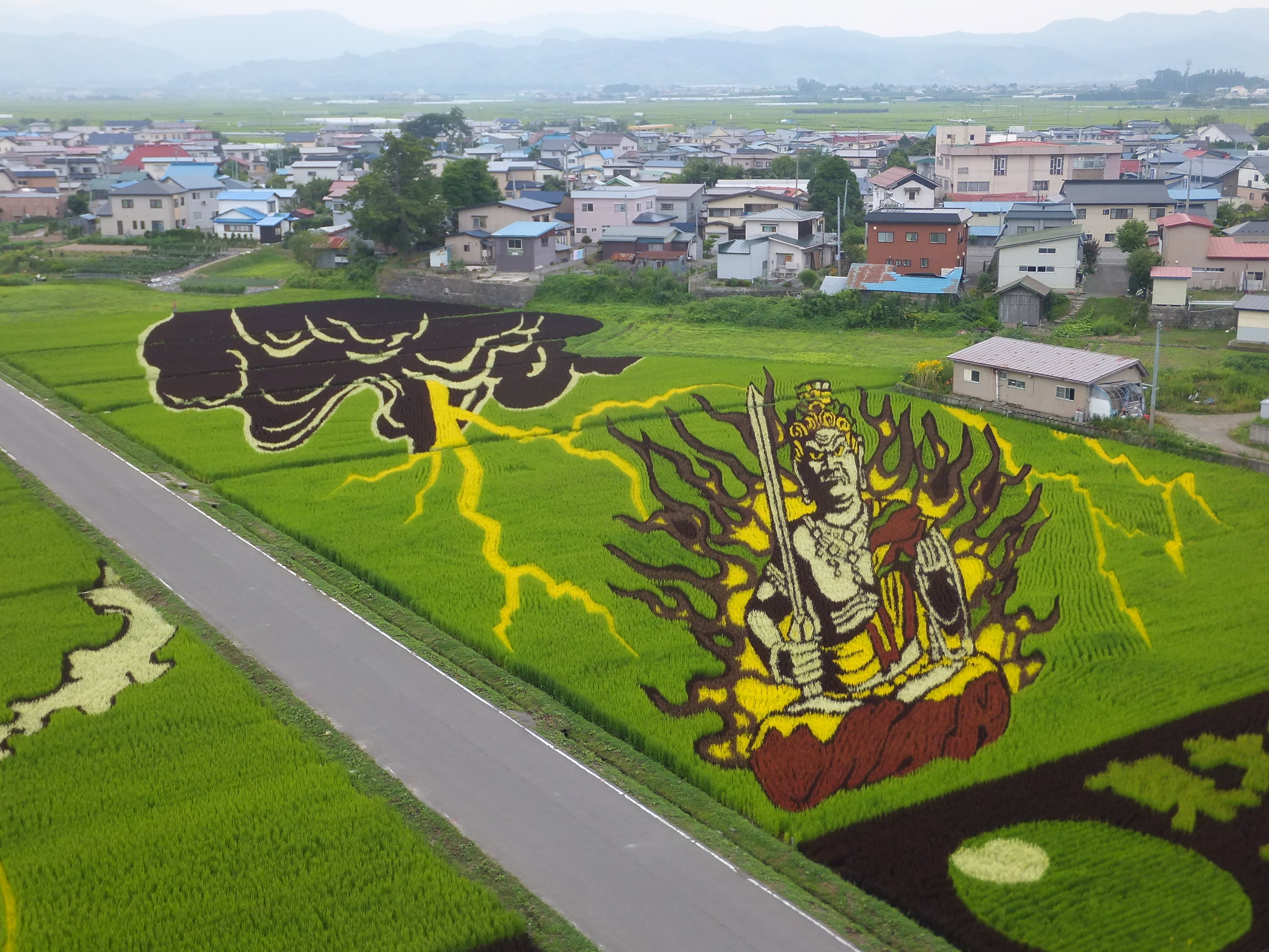 Grainy views are a good thing: A village in Japan uses rice paddies as canvases for art (American Way)