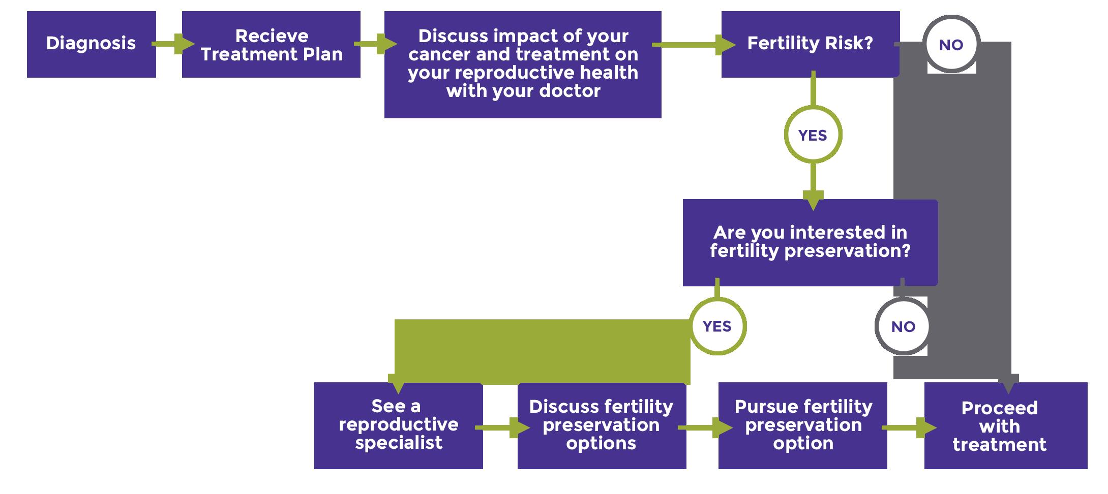 PatientWomens_OptionsChart_1.png
