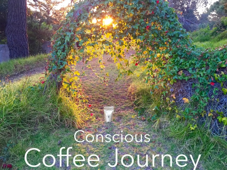 Conscious Coffee Journey.jpg