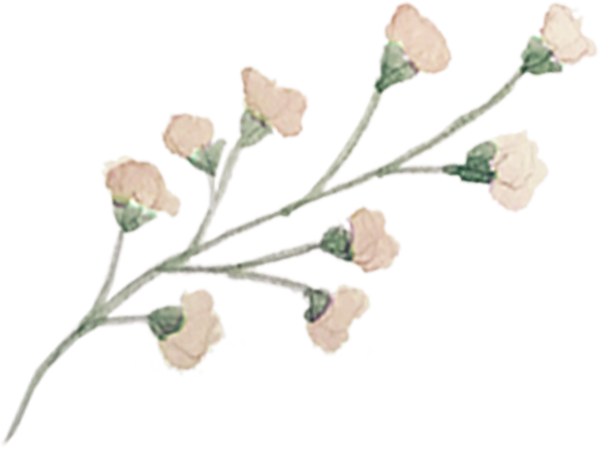 single-floral-2.png