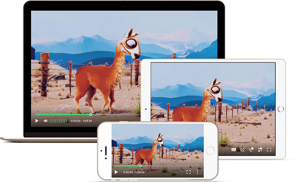Fig. 1: Ooyala's Playback feature on multiple platforms
