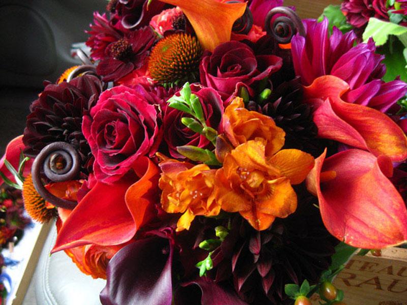 VIVID 3 flowers.jpg