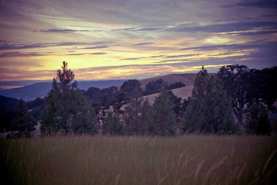 The sun setting in Lyle