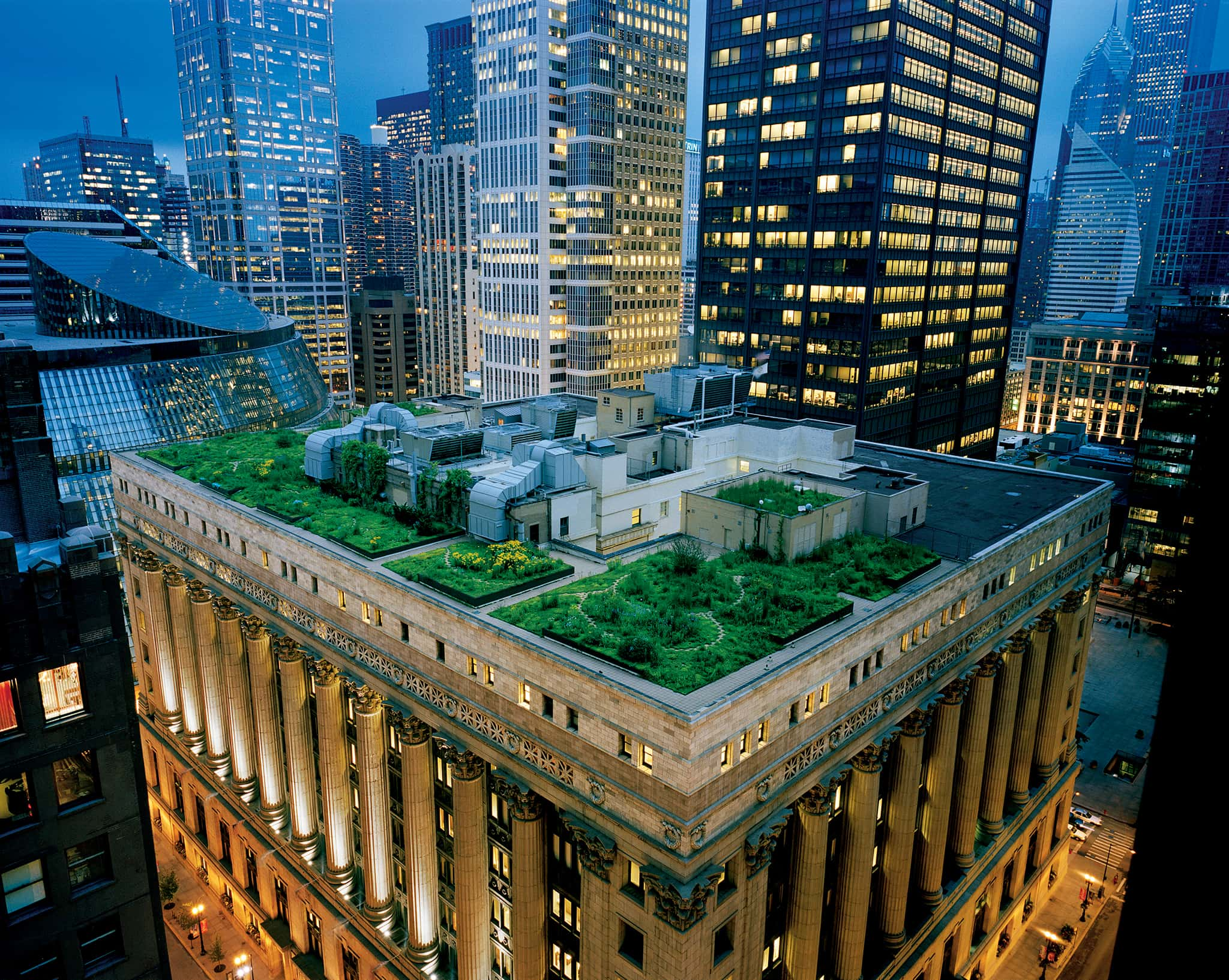 Chicago's city hall rooftop garden is more than 150 species, mostly prairie plants native to the Chicago region, including two trees, woody shrubs and vines.  /  image:  Diane Cook & Len Jenshe