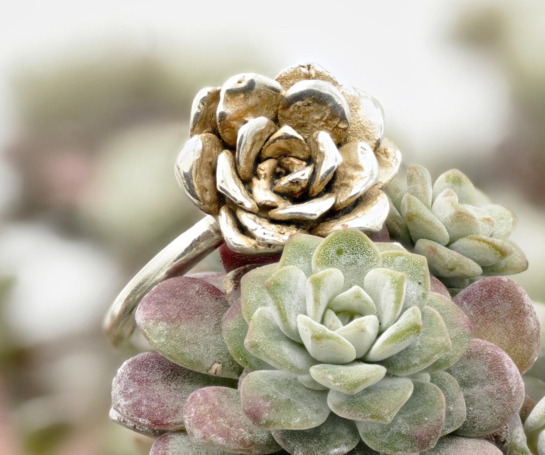 capo-blanco-sterling-silver-rosette-ring-on-plant7 - 1.jpg