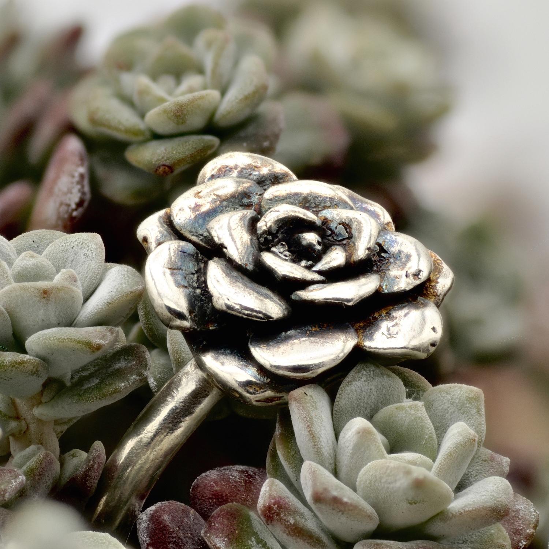 capo-blanco-sterling-silver-rosette-ring-on-plant3.jpg