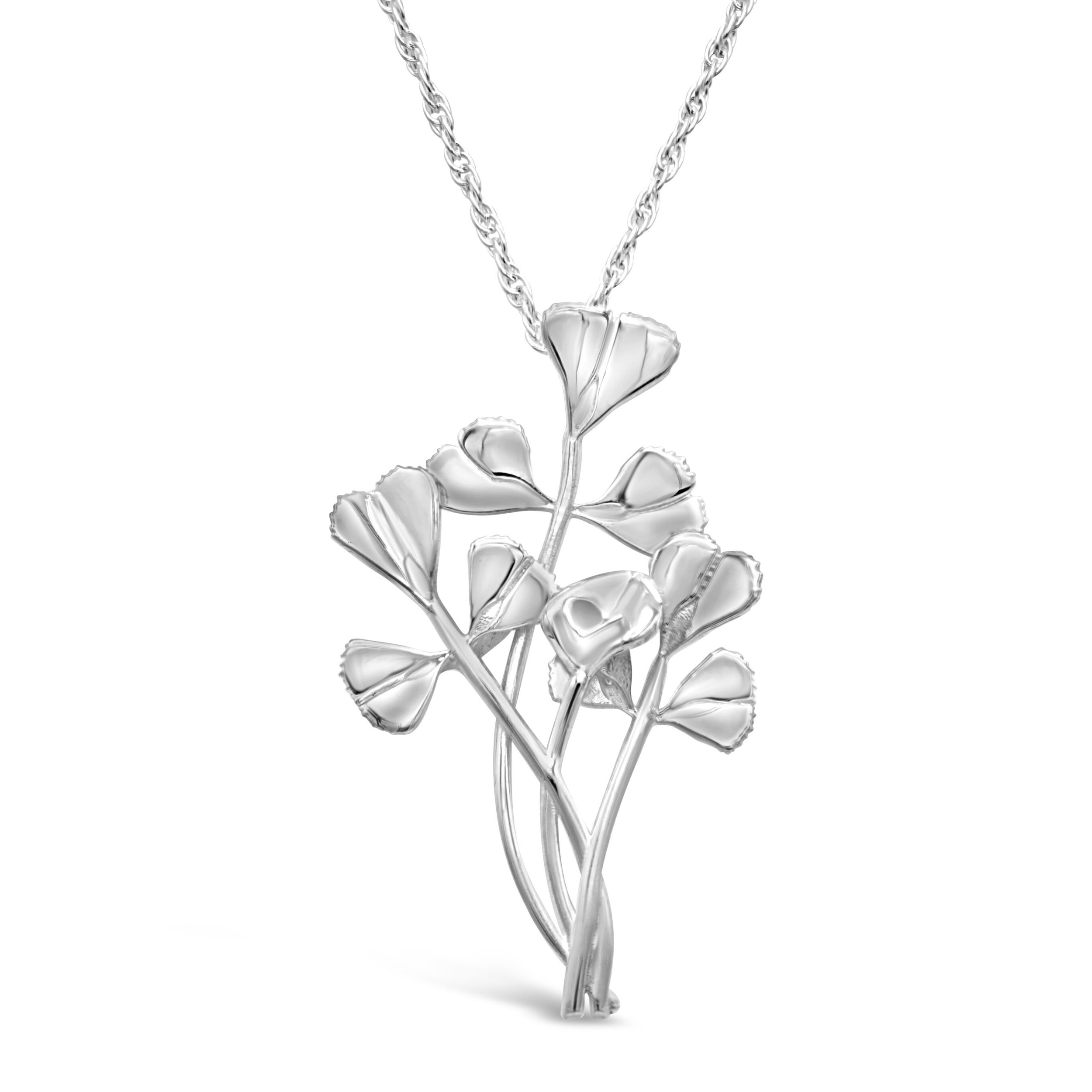 burclover-medicago-truncatula-silver-necklace.jpg