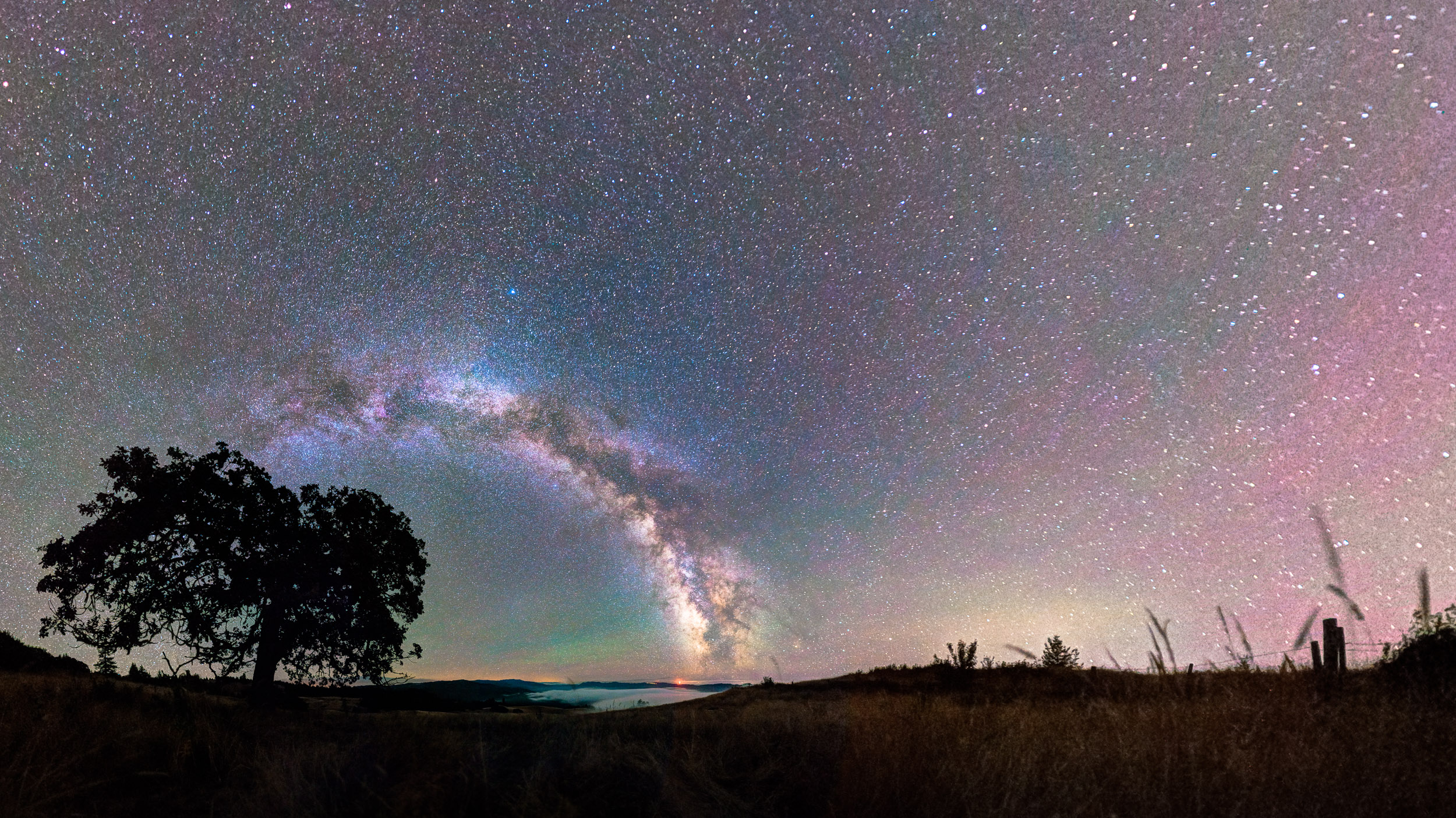 Stellar Field