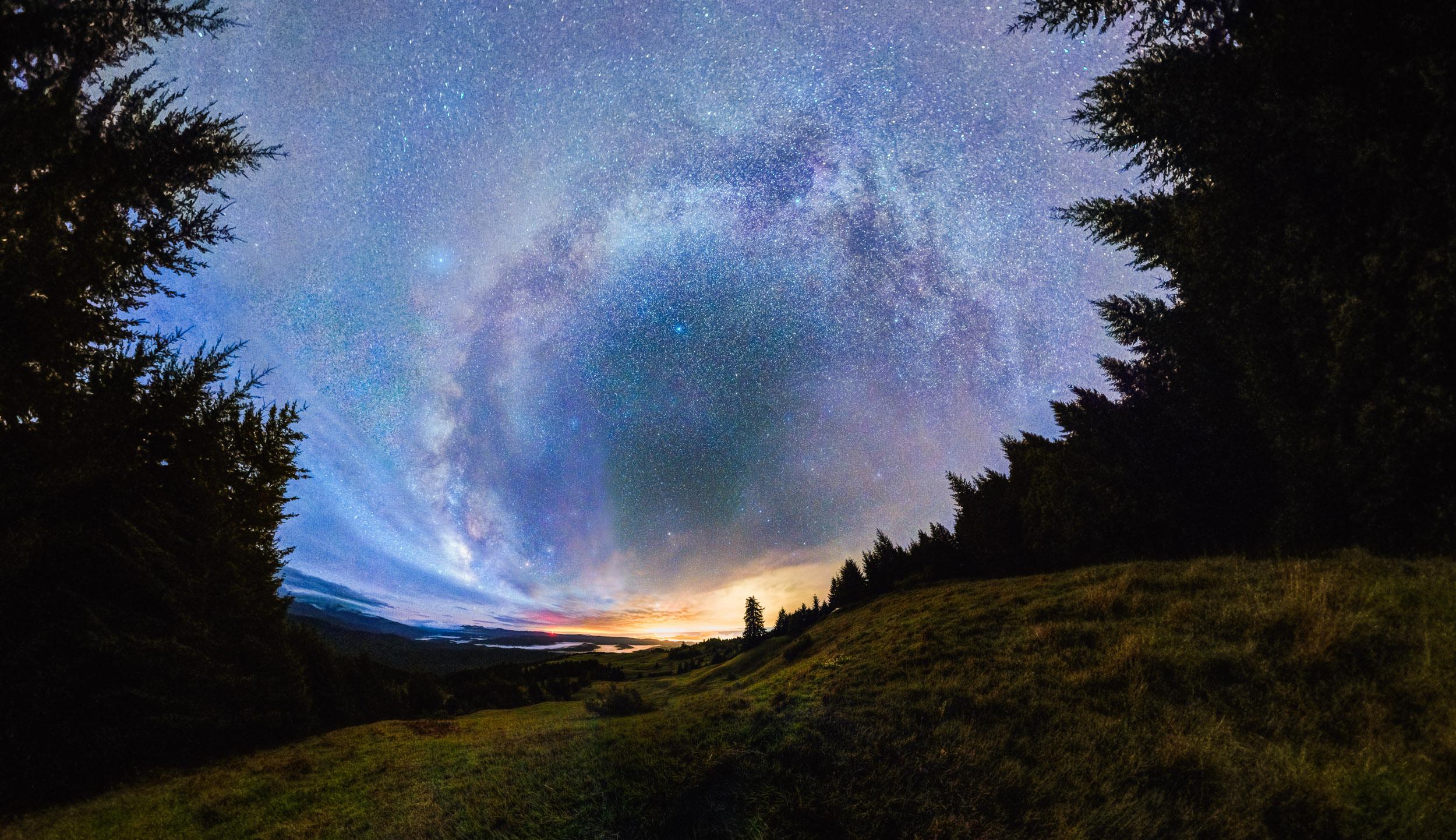 Milky Forest Warp