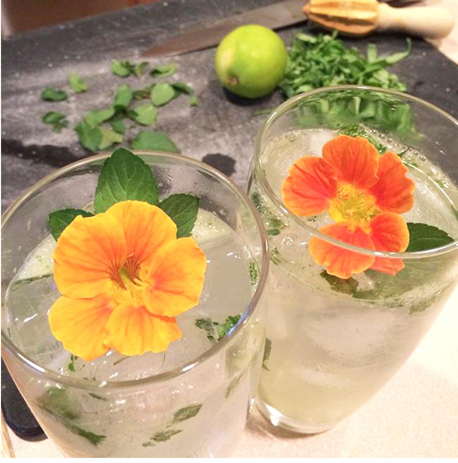 flower_drinks.jpg