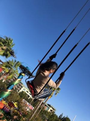 Soaring at California Adventure