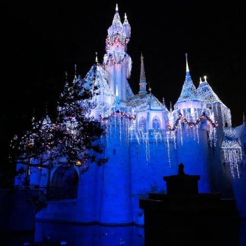 Disneyland in December.
