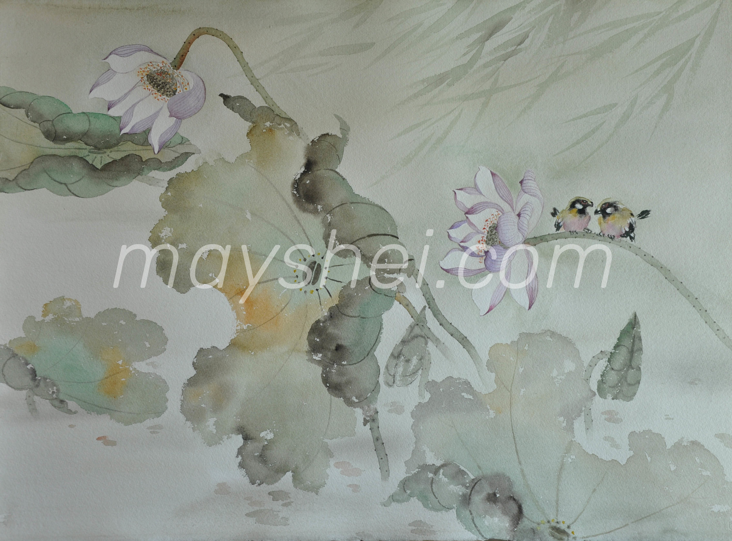 Purple Lotus, 嶺南荷花(二)