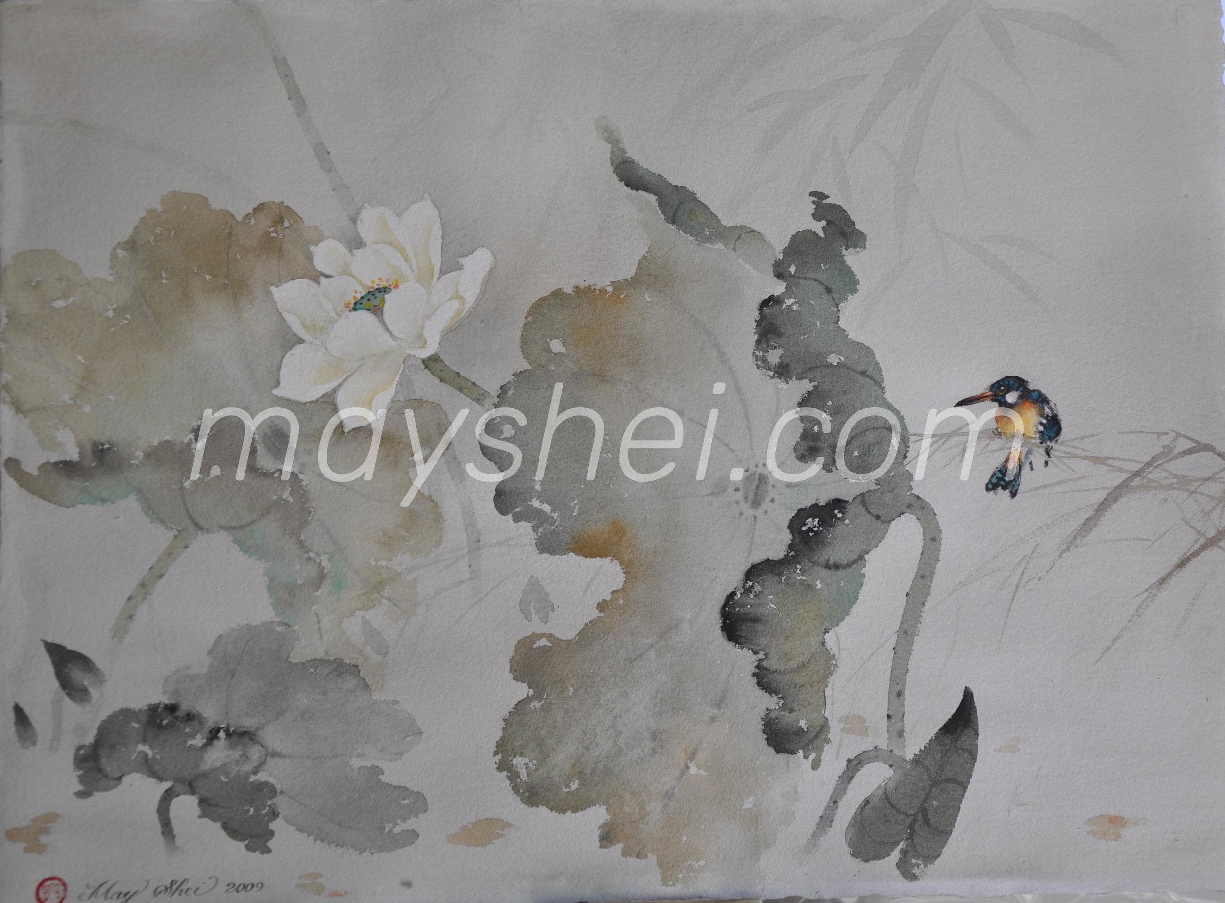 White Lotus, 荷花翠鳥圖