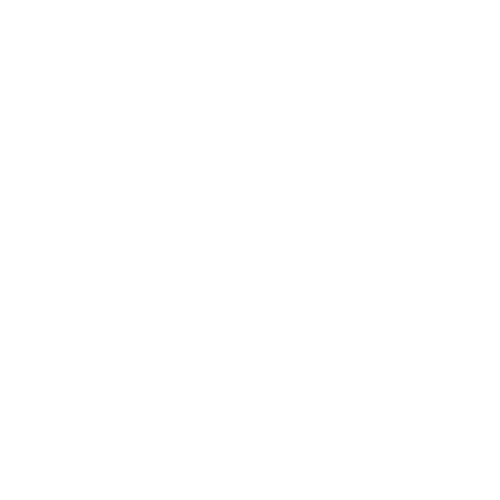 All But Nuts white transparentpng copy.png