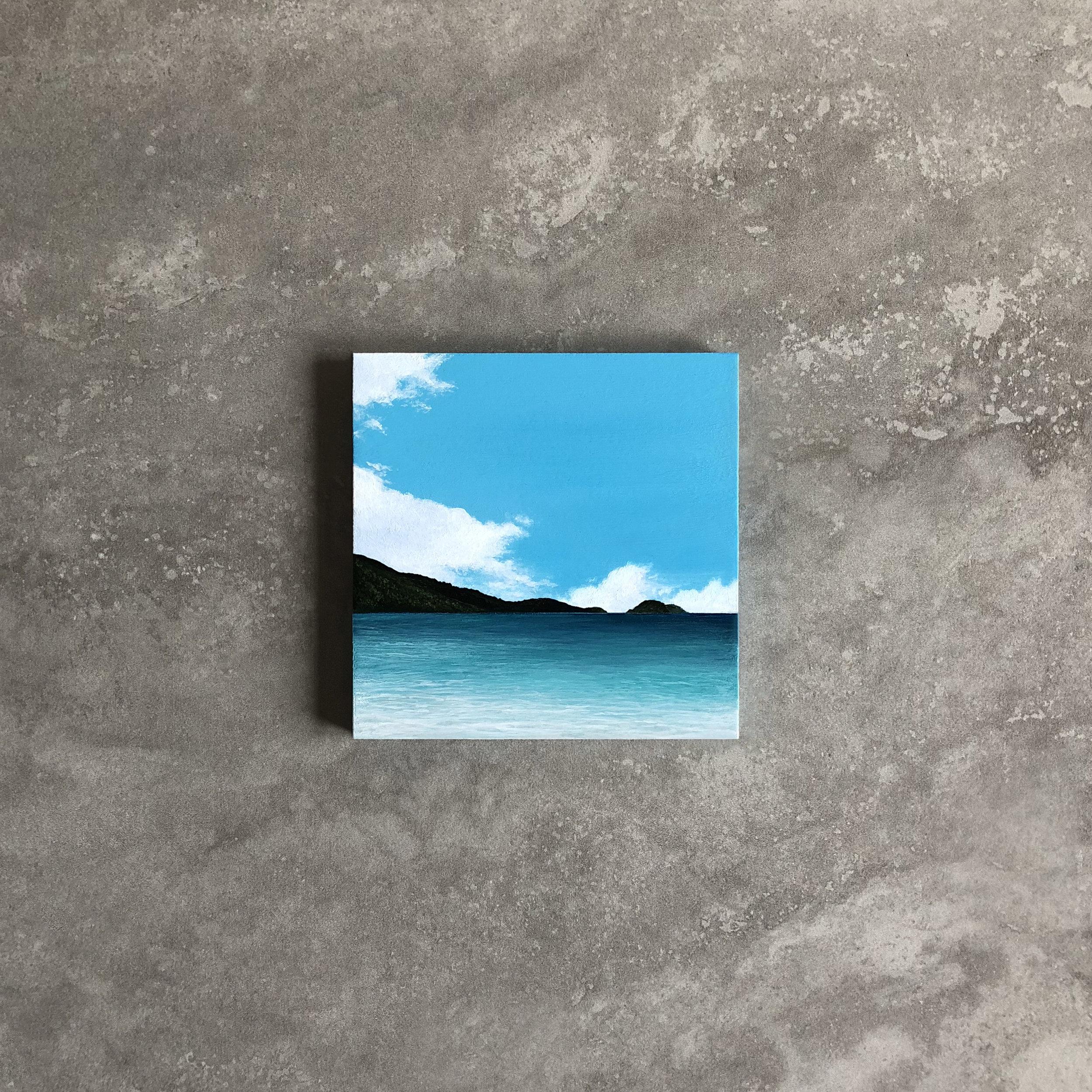 Afternoon Swim,  Acrylic, 2018