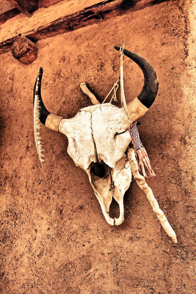 Buffalo Skull, Taos Pueblo New Mexico