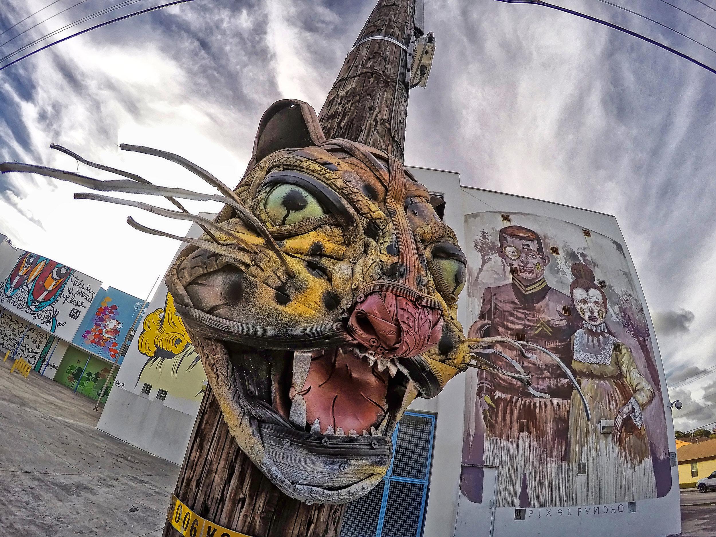 Jaguar by Robert Litterati